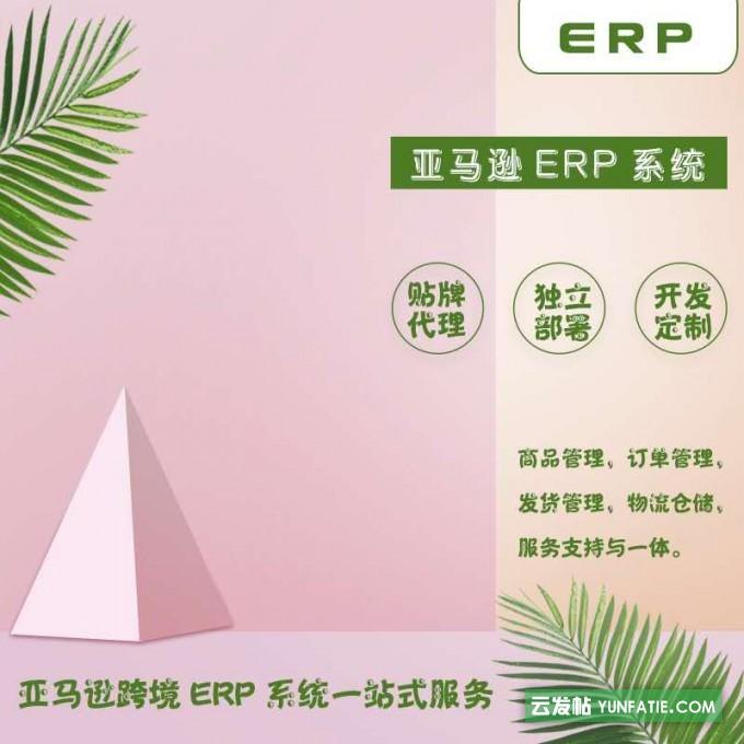 跨境电商亚马逊erp采集软件定制开发部署